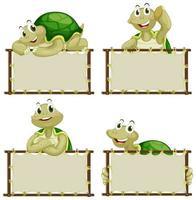 modèle de carte avec des tortues mignonnes vecteur