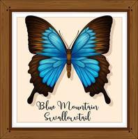 papillon bleu dans un cadre en bois