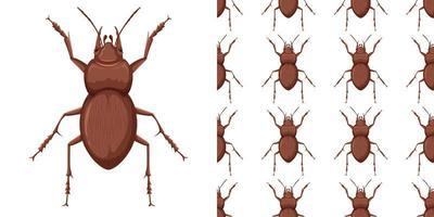 insecte et motif de coléoptère vecteur