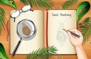 page de livre vierge avec escargot et feuilles