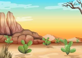 désert avec montagnes rocheuses et cactus