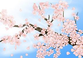 Peach Blossom En Shinny Jour vecteur