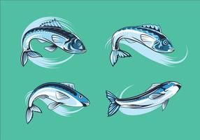 Set Sardines fraîches vecteur
