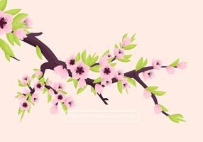 Illustration Vecteur Peach Blossom