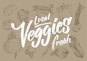 Légumes frais locaux vecteur