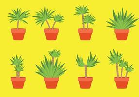 Yucca icônes vecteur libre