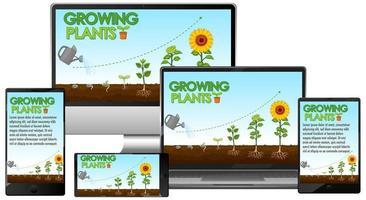 plantes rougeoyantes sur écran d'ordinateur