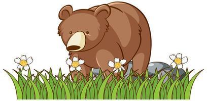 Photo isolée de l'ours grizzli dans le jardin vecteur