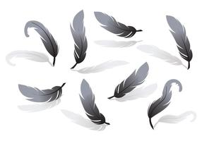 Vecteur de pluma
