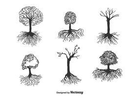 Arbre avec des racines vecteur