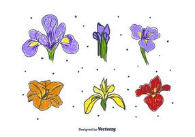 Hand Drawn Iris Set Fleur vecteur