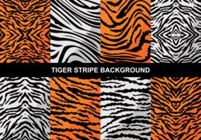 Arrière-plan de rayure de tigre vecteur