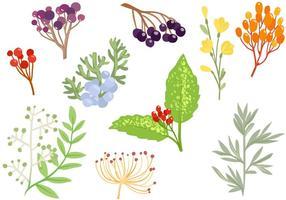 Vecteurs d'herbes décoratives gratuites vecteur