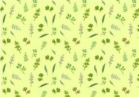 Herbes gratuites vecteurs de motif