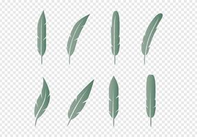 Set plumes icônes vecteur