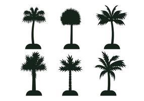 Silhouette du vecteur arbre palmetto