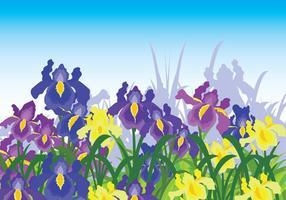 Arrière-plan Iris Flower vecteur