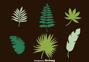 Vecteurs de collection de feuilles de palmier vecteur