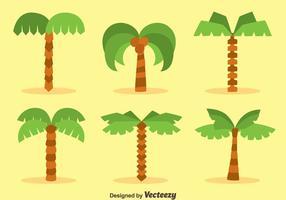 Vecteurs de collection Flat Plam Tree