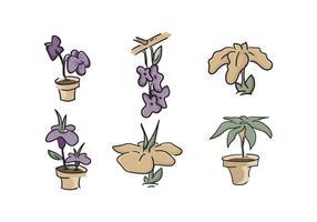 Vecteur Belle Iris Flower gratuit