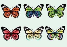 Paquet de vecteur mariposa