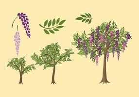 Wisteria Plant Grow Free Vector