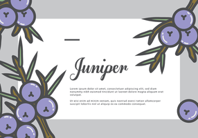Carte Juniper Gretting vecteur