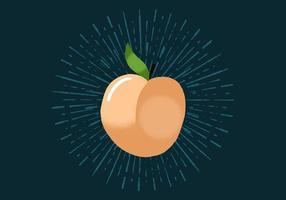 Peach radiant vecteur