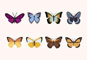 Vecteurs papillons plats vecteur