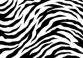 White Tiger Stripes vecteur
