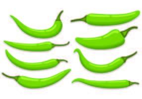Ensemble de vecteurs de chili vecteur