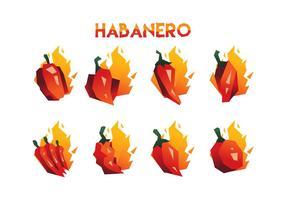 Collection gratuite de vecteurs Habanero vecteur