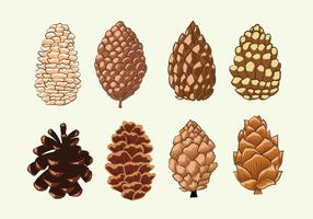 Collection Set Pine Cones vecteur