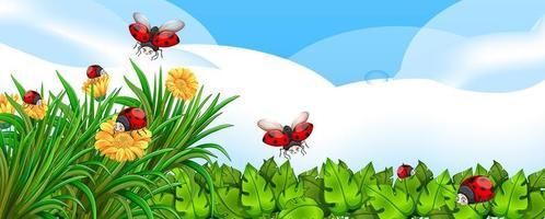 Scène vierge avec des coccinelles dans le jardin avec des fleurs pendant la journée vecteur
