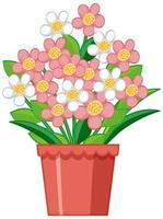 belle fleur en pot d'argile sur fond blanc vecteur