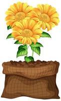 belle fleur dans un sac marron sur fond blanc vecteur