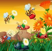 scène avec des plantes et des insectes dans le jardin vecteur