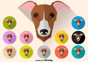 Ensemble de couleurs vectorielles d'icône de chien Whippet
