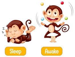 singes opposés avec sommeil et texte éveillé