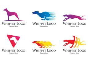 Logo du chien whippet vecteur
