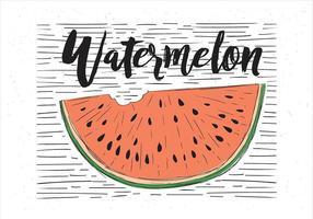 Illustration vectorielle gratuite dessinée à la main de pastèque vecteur