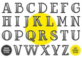 Alphabet vintage gravé en noir et blanc