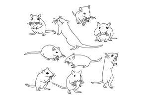 Gerbil mouse vecteur