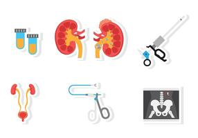 Icône d'urologie plate vecteur