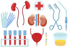 Vecteurs d'urologie gratuits vecteur