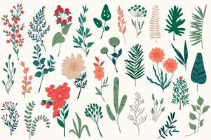 décorations florales dessinées à la main pour noël vecteur