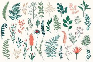ensemble d'éléments décoratifs de fleurs sauvages vecteur