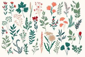 pack de design botanique coloré dessiné à la main vecteur
