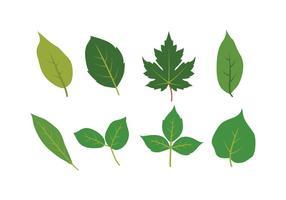 Ensemble d'icônes de feuilles vecteur