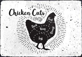 Vecteur de diagramme de coupe de poulet
